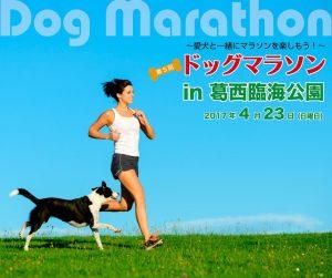 第5回ドッグマラソンin葛西臨海公園に協賛させていただきます!4/23(日)