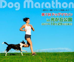 第7回ドッグマラソンin光が丘公園に協賛させていただきます!