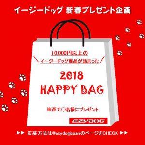 インスタグラムフォロワー様限定!!Happy Bagプレゼント企画開催です!