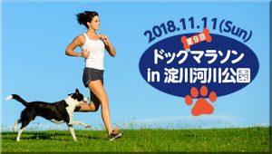 第9回ドッグマラソンin淀川河川公園に協賛させていただきます!11/11(日)
