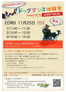 愛犬とダンスを体験しよう!ドッグダンス体験会 11月25日(日)に開催!