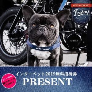 インスタグラム限定!!インターペット2019無料招待券プレゼント企画開催!