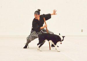 伊藤トレーナーがドッグダンスの世界大会に出場します!