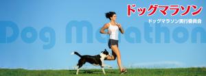 第10回ドッグマラソン東京大会in光が丘公園に協賛させていただきます!4/28(日)