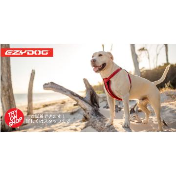 TRY ON SHOPボード・大型犬(高さ30cm × 幅60cm)